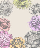 Flowers. Card. Pencil Drawing. Royalty Free Stock Photography