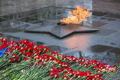 Flowers carnations put at the memorial eternal flame