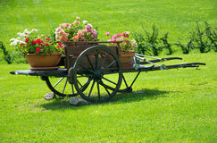 Flowers on the carriage. Horse-drawn carriage with flowers Stock Photography