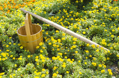 Flowers and cask. Fresh bright flowers and clean cask Stock Photo