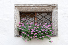 Flowers in a Castle Wall Window Royalty Free Stock Photos