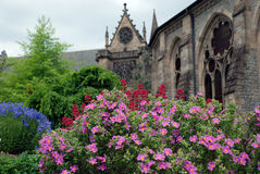 Flowers and cathedral Stock Images