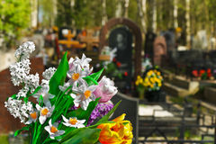 Flowers and cemetery. On background Stock Images