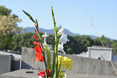 Flowers in a cemetery. With a cross in the background Stock Photo