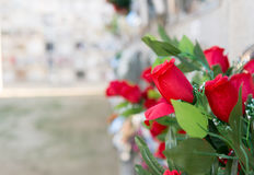 Flowers in a cemetery. Detail of a bouquet of flowers in a cemetery Royalty Free Stock Image