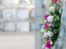 Flowers in a cemetery Stock Photography