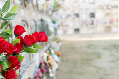 Flowers in a cemetery. Detail of a bouquet of flowers in a cemetery Royalty Free Stock Photos
