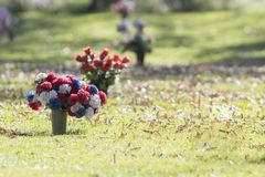 Flowers in a Cemetery on a Fall Day in Colorado. With Grass & Leaves in the Background Stock Photography