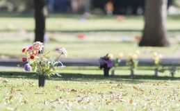 Flowers in a Cemetery on A Fall Day in Colorado. With Large Mature Trees in the Background Royalty Free Stock Photos