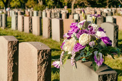 Flowers in a cemetery Royalty Free Stock Image