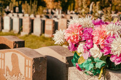 Flowers in a cemetery. With headstones in the background at sunset Royalty Free Stock Photography
