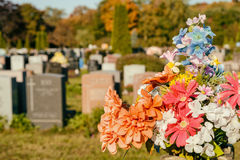 Flowers in a cemetery. With headstones in the background at sunset Stock Photography