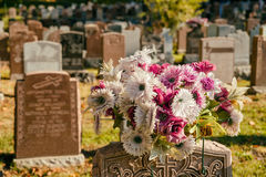 Flowers in a cemetery. With headstones in the background at sunset Stock Image