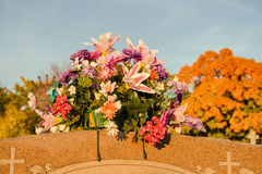 Flowers in a cemetery. With large maple trees in the background, in autumn (Beloeil, Quebec, Canada Stock Photography