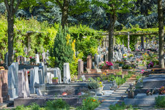 Flowers in a cemetery with tombstones in background Royalty Free Stock Photos
