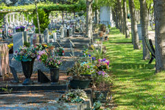Flowers in a cemetery with tombstones in background Stock Photography