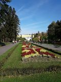 Flowers in the Central Park in Vrnjacka Banja. Serbia royalty free stock photo
