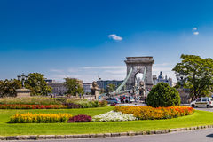 Flowers and The Chain Bridge in Budapest Royalty Free Stock Image