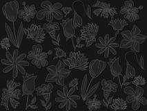Flowers chalk vector illustration Stock Photos