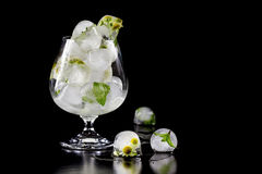 Flowers of chamomile and mint leaves frozen in ice. Royalty Free Stock Images