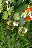 Flowers and champagne. Champagne and  a nice wedding-bouquet Stock Photography