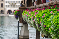 Flowers on The Chapel Bridge in Lucerne Royalty Free Stock Photos