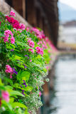Flowers on The Chapel Bridge in Lucerne Stock Images