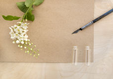 Flowers cherry with blank sheet of old paper. Royalty Free Stock Photo