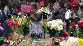 Flowers, Chichicastenango, Guatemala Royalty Free Stock Image