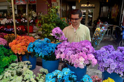 Flowers for the Chinese New Year. People shopping for flowers to be used as offerings and decorations for the coming Chinese New Year Stock Image