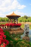 Flowers in Chinese park. Stock Photo