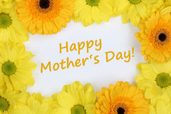 Flowers Chrysanthemums on mothers day Stock Photo