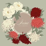 Flowers. Chrysanthemums and peonies. Vector vintage illustration. Flower frame. Floral ornament. Classic card. Botany. Royalty Free Stock Images