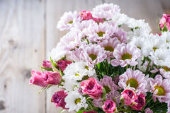 Flowers chrysanthemums and roses Stock Images