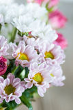 Flowers chrysanthemums and roses Royalty Free Stock Images
