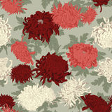 Flowers. Chrysanthemums. Seamless vector background in vintage style. Stock Photo