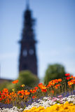 Flowers and church in Freiburg, Germany Stock Photography