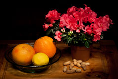 flowers, citrus and peanuts Stock Photo
