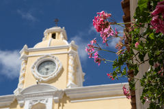 Flowers with clock tower in the backgroung Royalty Free Stock Photography