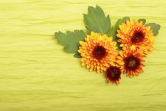 Flowers on cloth. Orange flowers and green leaves on cloth Stock Photography