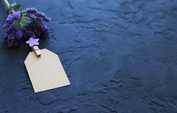 Flowers, clothespins, paper for writing on a dark background stock photo