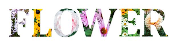 Flowers collage sign made of real floral photos. Botanical font. royalty free illustration