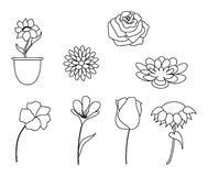 Flowers collection in black and white Royalty Free Stock Photos