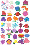 Flowers Collection. Flowers on a white background. Stock Images
