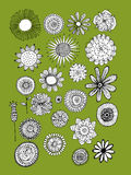 Flowers collection, sketch for your design Stock Images