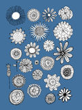Flowers collection, sketch for your design. Vector illustration Royalty Free Stock Image