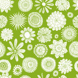 Flowers collection, sketch for your design. Vector illustration Royalty Free Stock Images