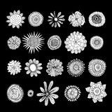 Flowers collection, sketch for your design Stock Image