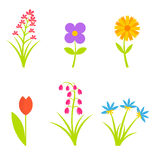 Flowers collection Royalty Free Stock Photos