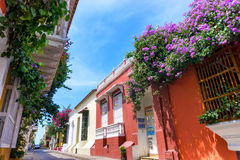Flowers and Colonial Facades Stock Photos